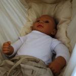 babybubu federwiege test vergleich E37B